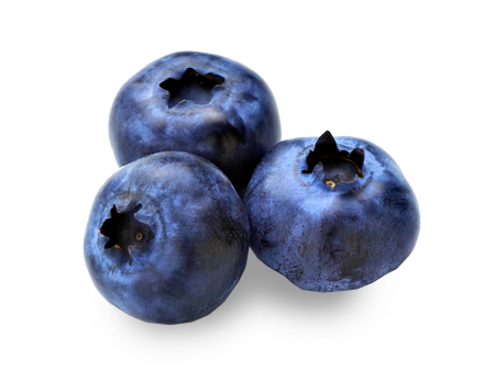 blueberry-frozen-USA