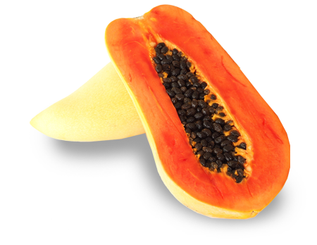 Maradol Papaya Pictures