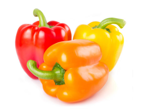 peppers-bell-supplier-USA